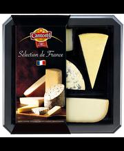 juustuvalik 5 erinevat juustu, 300g
