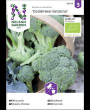 85079 Brokoli Calabrese natalino Organic
