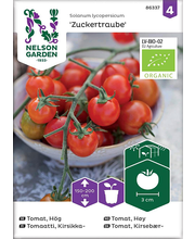86337 Kirssomat Zuckertraube  Organic