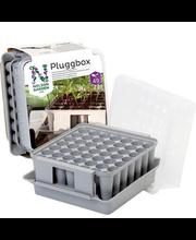 Minikasvuhoone Pluggbox 49-le 22x20x15 cm plast