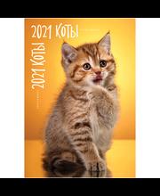 Koshki Kalender