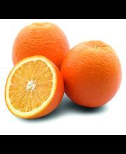 Apelsin Valencia,  I klass