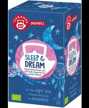 TEEKANNE Organics Sleep & Dream 34g