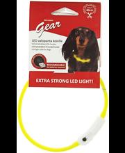 Best Friend Gear seadistatav LED-kaelavõru, 40 cm