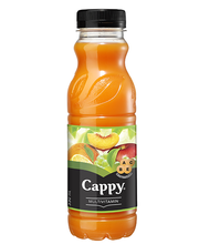Cappy mitme puuvilja nektar, 330 ml