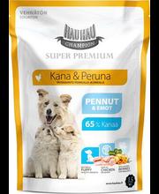 Hau-Hau Champion Super Premium täissööt kutsikatele kana ja k...