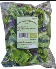 Mahe bataavia salatisegu, punane ja roheline 100 g