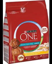 Purina One Medium/Maxi Junior täissööt koertele kanaliha ja r...