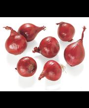 Punane sibul, mahe, II klass, 250 g
