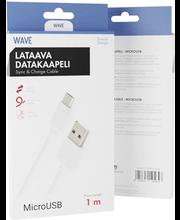 Datakaabel Micro USB 5V/1A 1 m