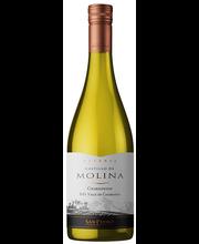 Castillo De Molina Reserva Chardonnay, 750 ml