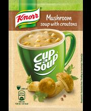 Püreesupp puraviku Knorr 15g