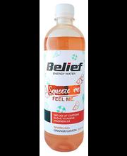 BELIEF Apelsini-sidruni gaseeritud energiavesi 530ml