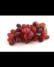 Viinamari Red Globe, I klass