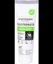 Hambapasta Whitening Fresh Mint 75 ml