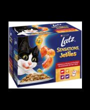 Täissöödavalik kassidele 12 × 100 g