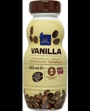 Rainbow vanilla vanillimaitseline piimakohvijook  250 ml