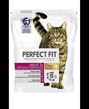 Kuivtoit kastreeritud ja steriliseeritud kassidele 1,4 kg