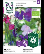 87806 Lillhernes Spencer  Organic