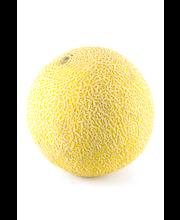 Rainbow melon Galia