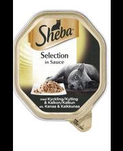 Täissööt kassidele kana- ja kalkuniliha kastmes 85 g