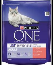 Kuivtoit kassidele lõhe ja täisteraviljaga 800 g