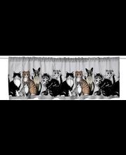 ülakardin kitties valance 60x250 cm