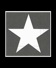Salvrätik 33cm 20tk big star hall