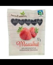 Külmkuivatatud maasikad 12 g