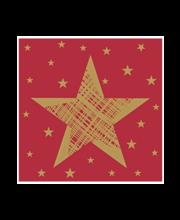 Salvrätik 24 cm 20 tk Shining Star punane