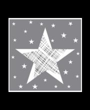 Salvrätik 24 cm 20 tk Shining Star hall