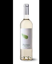 Pluma Vinho Verde vein, 750 ml