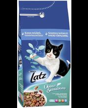 Kuivtoit kassidele lõhe, pollaki ja köögiviljaga 2 kg