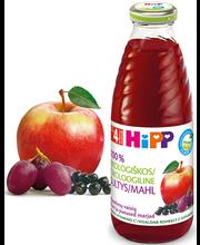 Hipp õunamahl punaste marjadega 500 ml, öko, alates 4-elukuust