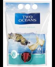 Two Oceans Pinot Grigio GT Vein 12,5% 1,5L