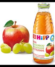 Hipp õuna-viinamarja mahl bio 500 ml, öko, alates 4-elukuust