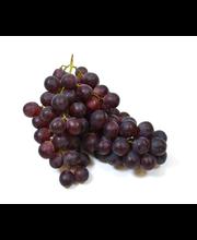 Viinamari Red Globe I klass