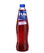 Fun Light metsamarja kontsentraat 1+7 500 ml