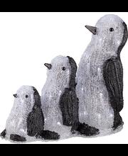 Jõuluvalgustus Pingviinid-3 40LED IP44