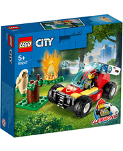 60247 City Metsatulekahju