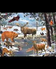 Puzzle Põhja Euroopa mets