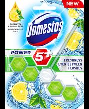 Domestos Power 5 Green Tea&Citrus WC-värskendaja 55 g