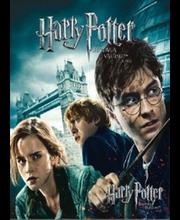 Dvd Harry Potter ja surma vägised