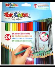 Värvipliiatsid 24 värvi