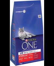 Täissööt steriliseeritud kassidele, veiseliha ja nisuga 1,5 kg