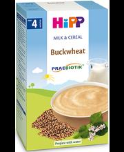 Hipp tatra piimapudrupulber 250 g, alates 4-elukuust