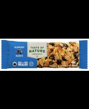 Pähkli-seemnebatoon mustikatega 40 g, gluteenivaba, orgaaniline