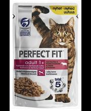 Täissööt kassidele härjaliha ja porgandiga 85 g