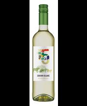 Big 5 Chenin Blanc vein 750 ml