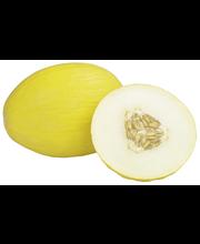 Melon, Kesk-Aasia